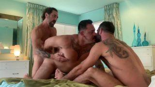 Kraving David: Jake Nicola, Vince Parker & David Krave