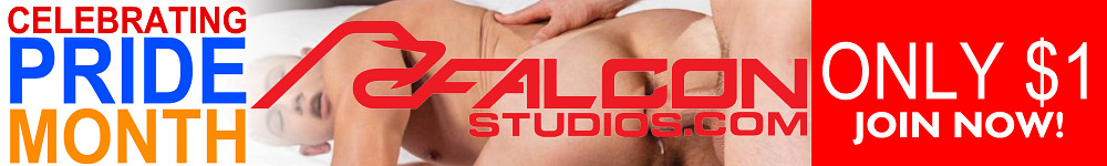 FalconStudios - $1 Sale