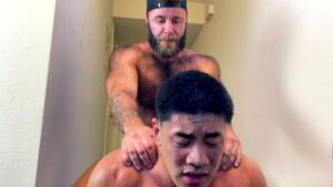 Dom Teddy Bear Breeds Muscle Stud